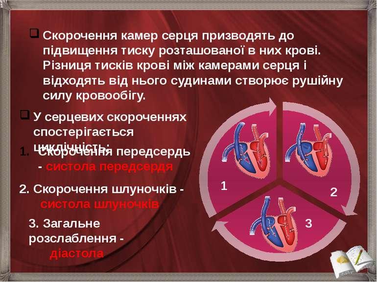 У серцевих скороченнях спостерігається циклічність: Скорочення камер серця пр...