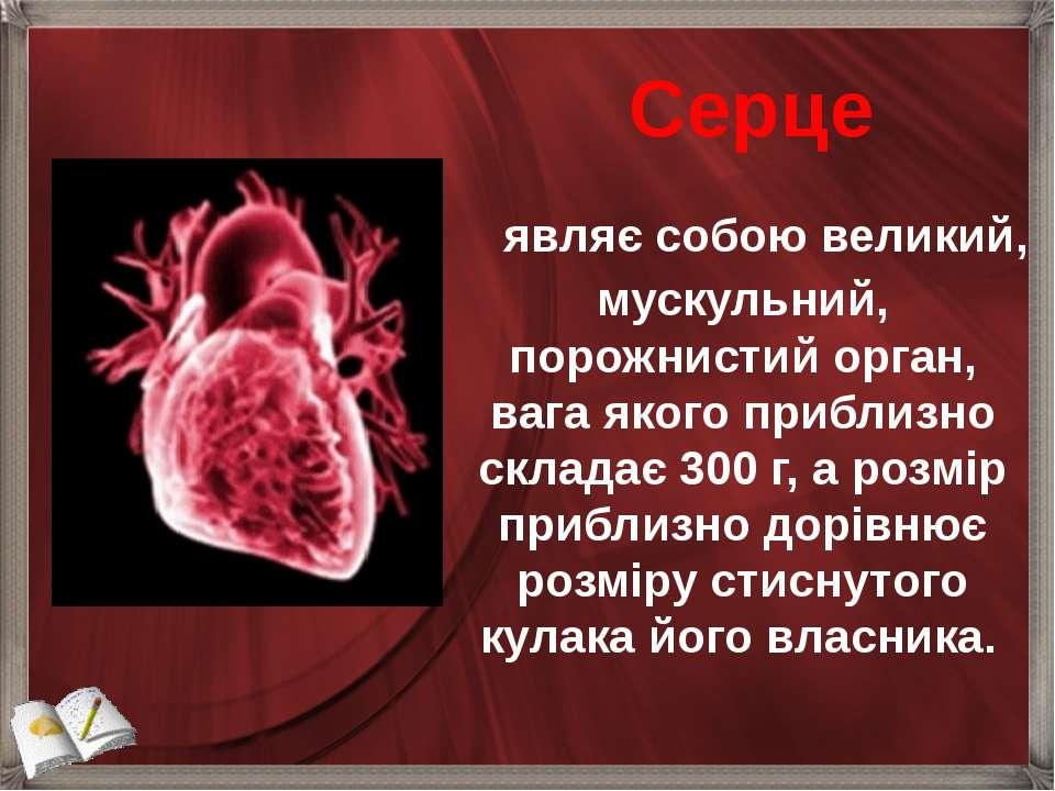 являє собою великий, мускульний, порожнистий орган, вага якого приблизно ...