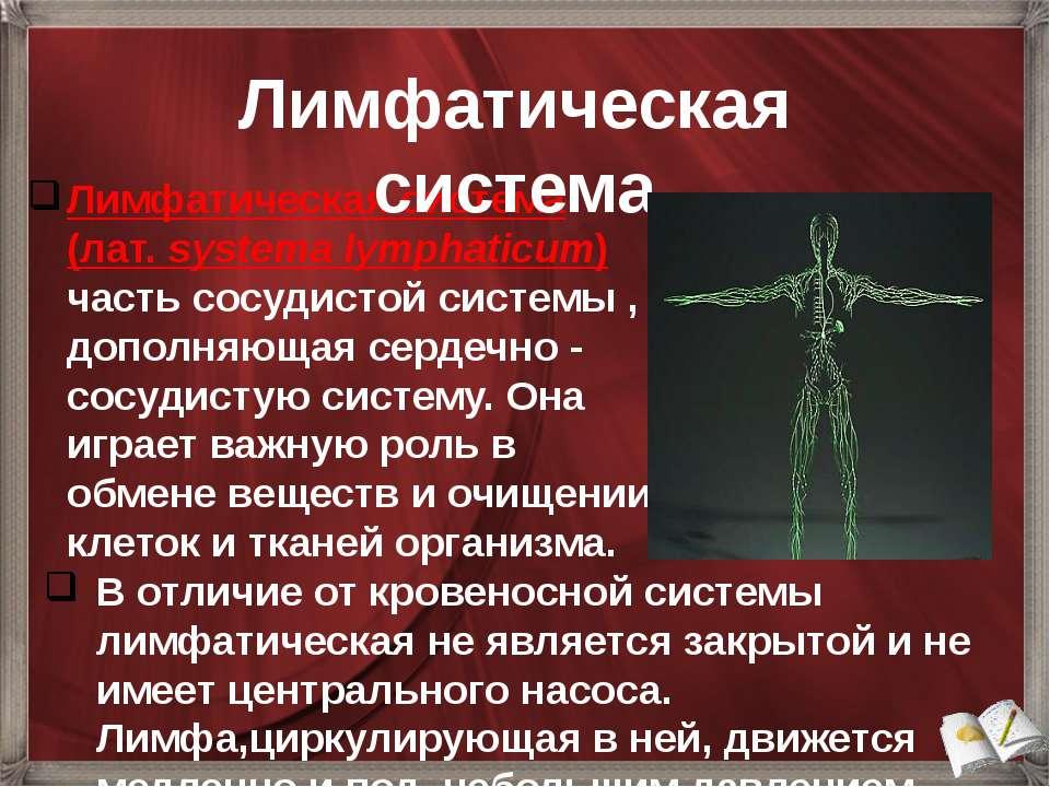 Лимфатическая система (лат.systema lymphaticum) часть сосудистой системы , д...