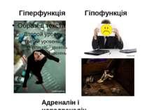 Гіперфункція Гіпофункція Адреналін і норадреналін