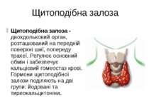 Щитоподібна залоза Щитоподібна залоза - двохдольковий орган, розташований на ...