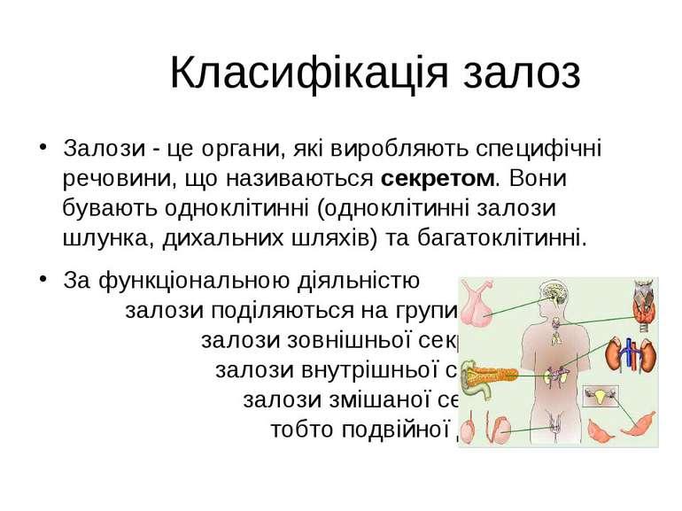 Класифікація залоз Залози - це органи, які виробляють специфічні речовини, що...