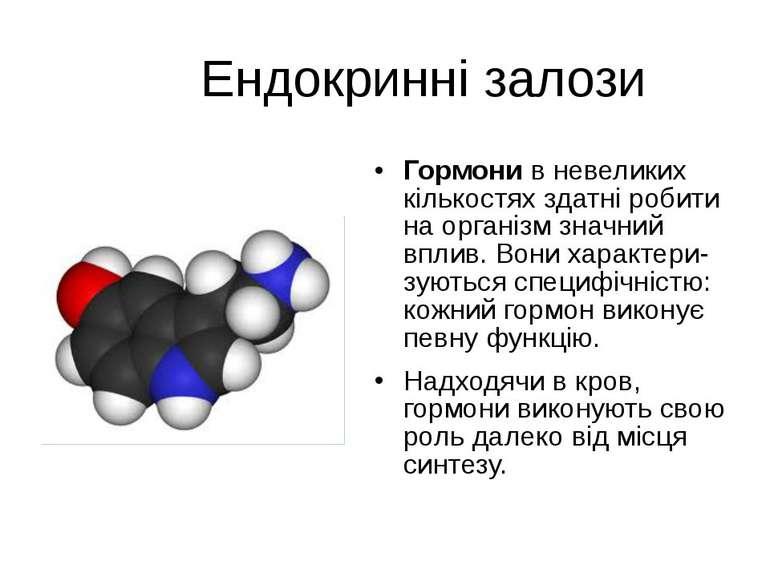 Ендокринні залози Гормони в невеликих кількостях здатні робити на організм зн...