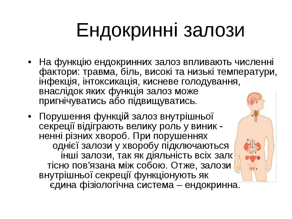 Ендокринні залози На функцію ендокринних залоз впливають численні фактори: тр...