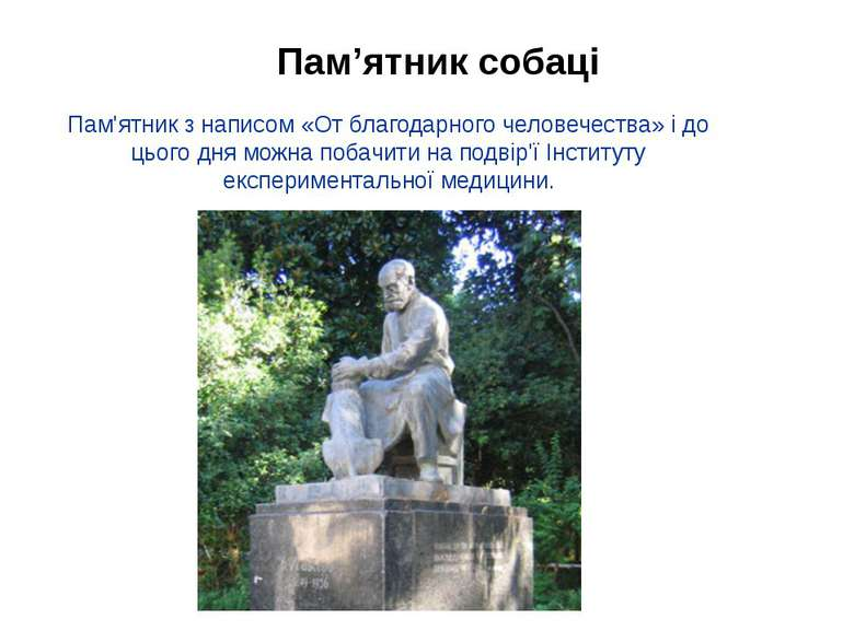 Пам'ятник з написом «От благодарного человечества» і до цього дня можна побач...