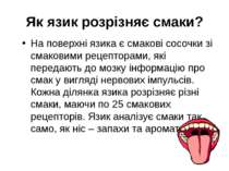 Як язик розрізняє смаки? На поверхні язика є смакові сосочки зі смаковими рец...