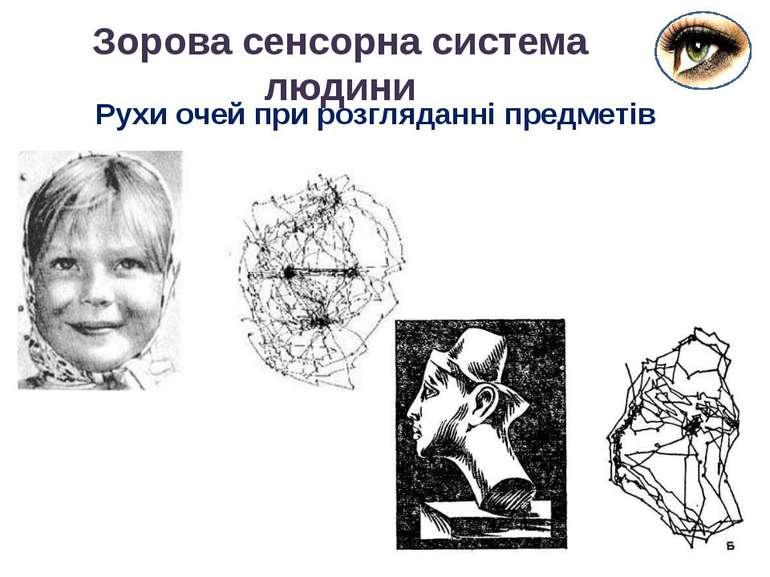 Зорова сенсорна система людини Рухи очей при розгляданні предметів