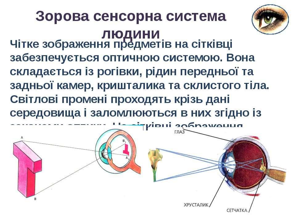 Чітке зображення предметів на сітківці забезпечується оптичною системою. Вона...