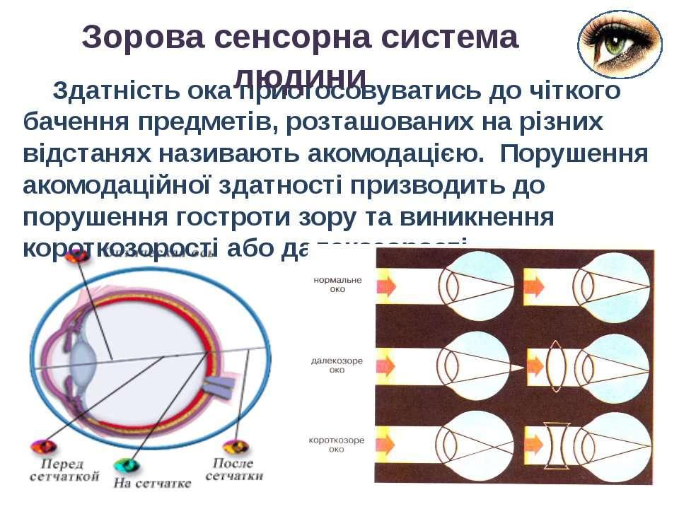 Здатність ока пристосовуватись до чіткого бачення предметів, розташованих на ...