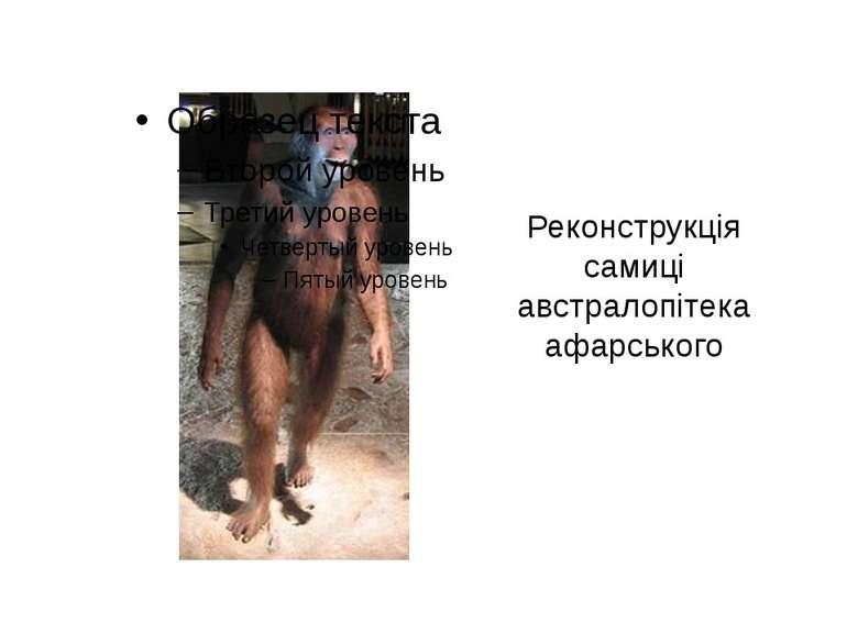 Реконструкція самиці австралопітека афарського