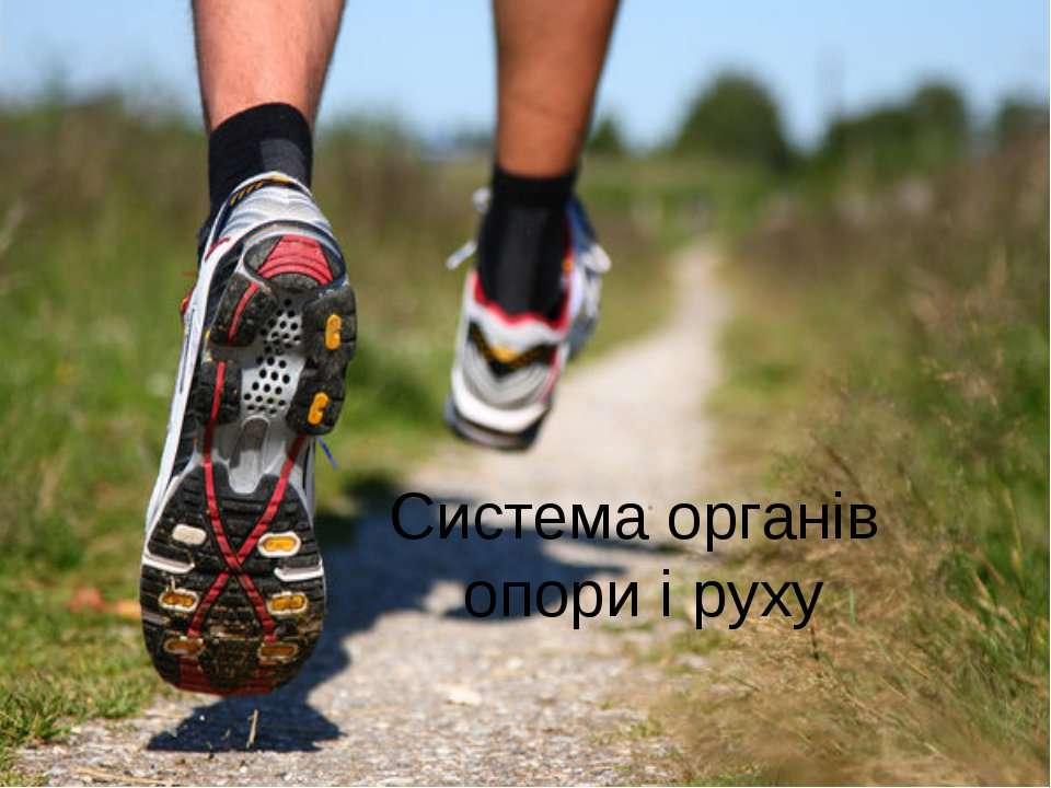 Система органів опори і руху