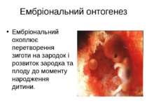 Ембріональний онтогенез Ембріональний охоплює перетворення зиготи на зародок ...
