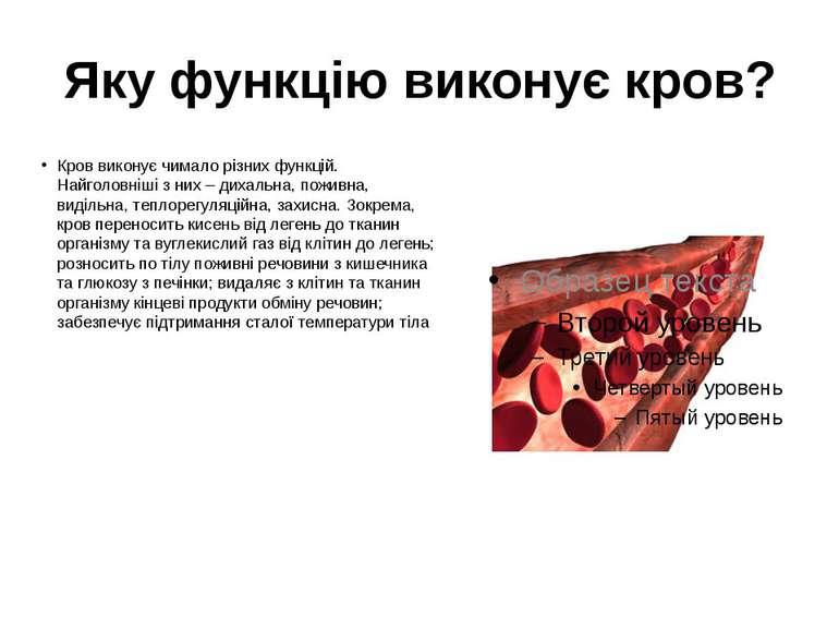 Яку функцію виконує кров? Кров виконує чимало різних функцій. Найголовніші з ...