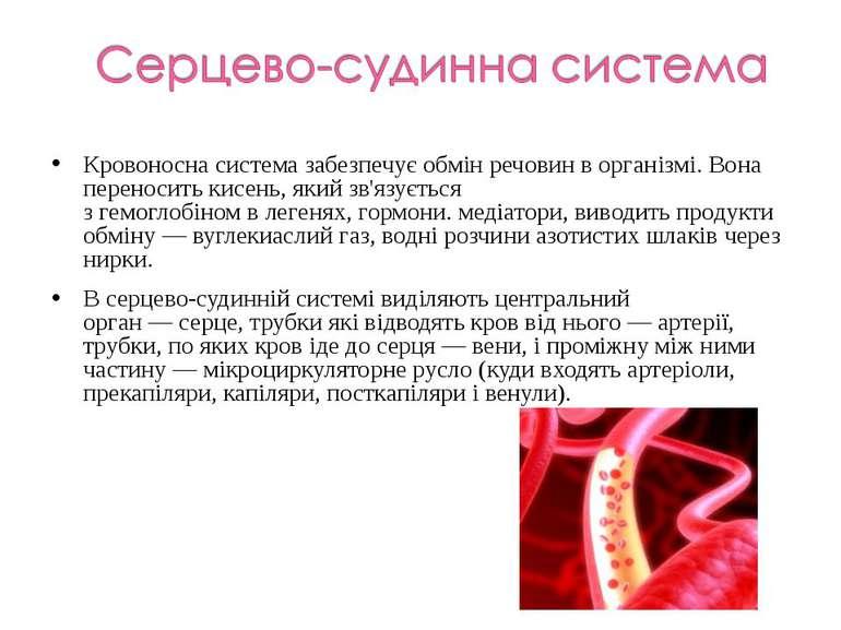 Кровоносна система забезпечує обмін речовин в організмі. Вона переноситькисе...
