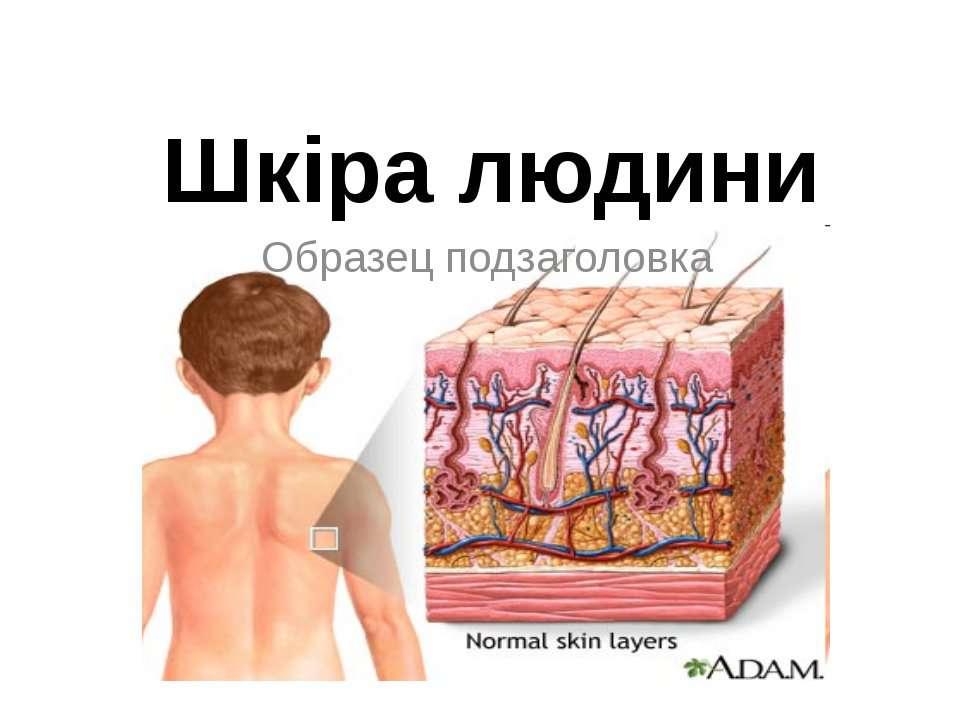 Шкіра людини