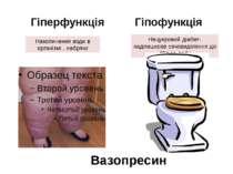 Гіперфункція Гіпофункція Накопичення води в організмі , набряки Нецукровий ді...