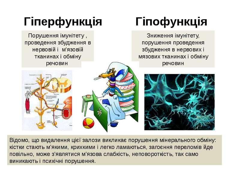 Гіперфункція Гіпофункція Порушення імунітету , проведення збудження в нервові...