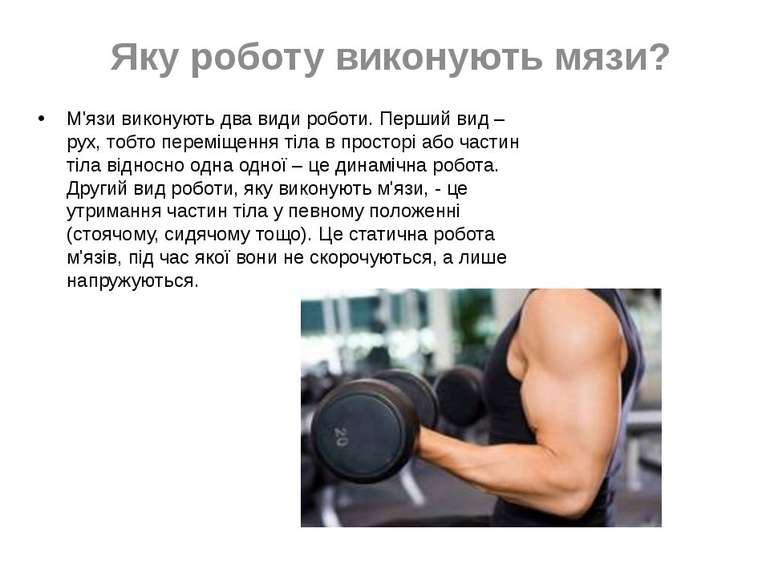 Яку роботу виконують мязи? М'язи виконують два види роботи. Перший вид – рух,...