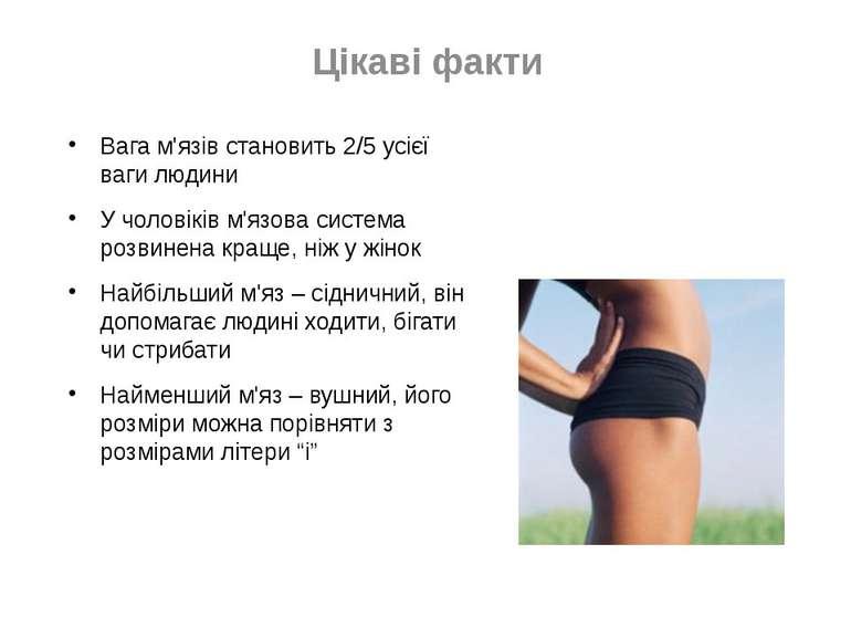 Цікаві факти Вага м'язів становить 2/5 усієї ваги людини У чоловіків м'язова ...