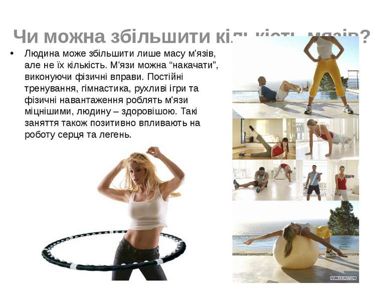 Чи можна збільшити кількість мязів? Людина може збільшити лише масу м'язів, а...