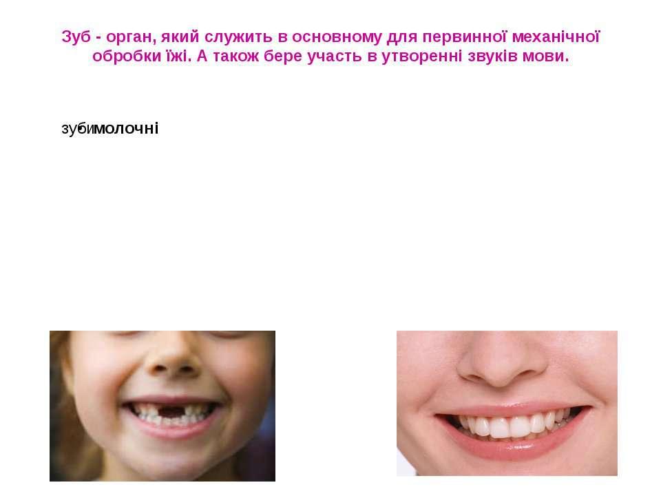Зуб - орган, який служить в основному для первинної механічної обробки їжі. А...