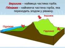 Вершина – найвища частина горба. Підніжжя – найнижча частина горба, яка перех...