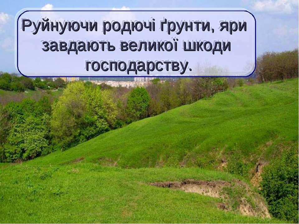 Руйнуючи родючі ґрунти, яри завдають великої шкоди господарству.
