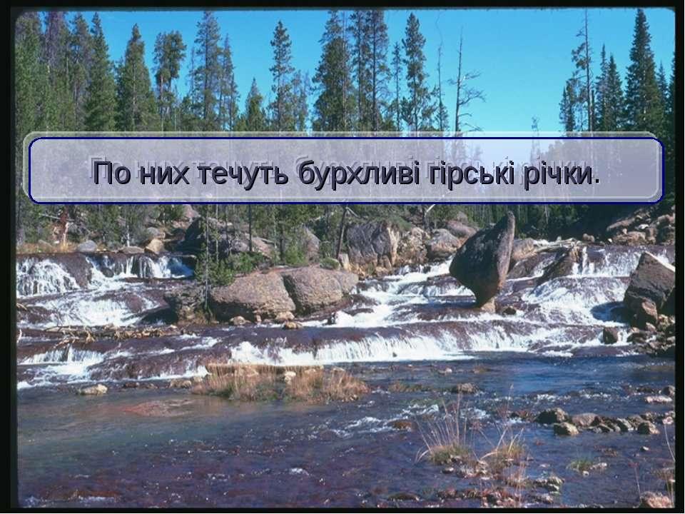 По них течуть бурхливі гірські річки.
