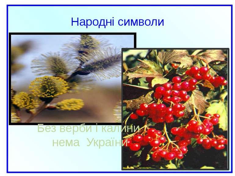 Народні символи Без верби і калини нема України