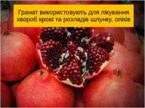 Гранат використовують для лікування хвороб крові та розладів шлунку, опіків