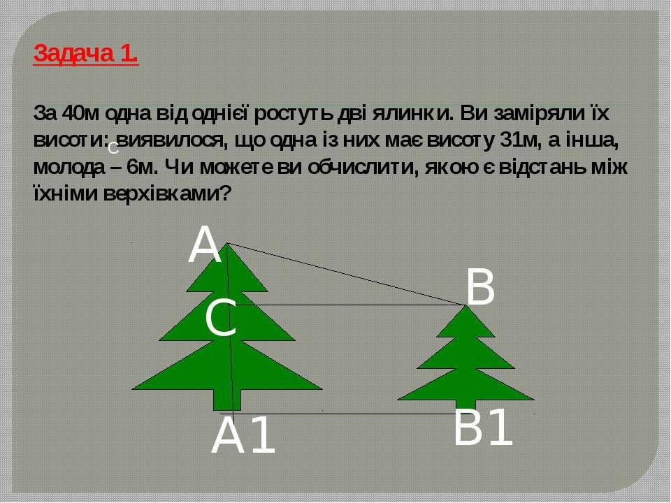 Задача 1. За 40м одна від однієї ростуть дві ялинки. Ви заміряли їх висоти: в...