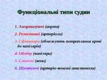 Функціональні типи судин 1. Амортизуючі (аорта) 2. Резистивні (артеріоли) 3. ...