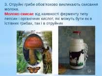 3. Отруйні гриби обов'язково викликають скисання молока. Молоко скисає від на...