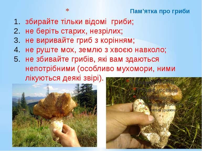 Пам'ятка про гриби збирайте тільки відомі гриби; не беріть старих, незрілих; ...