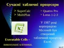 Сучасні табличні процесори SuperCalc MultiPlan У 1987 році корпорацією Micros...