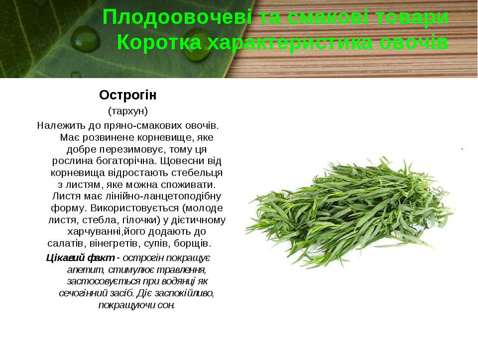 Плодоовочеві та смакові товари Коротка характеристика овочів Острогін (тархун...