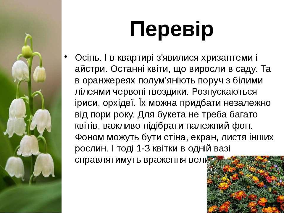 Осінь. І в квартирі з'явилися хризантеми і айстри. Останні квіти, що виросли ...