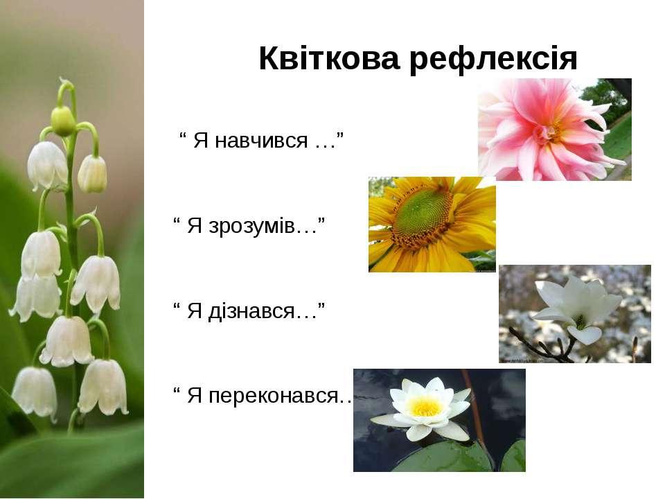 """Квіткова рефлексія """" Я навчився …"""" """" Я зрозумів…"""" """" Я дізнався…"""" """" Я перекона..."""