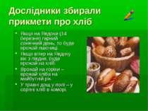 Дослідники збирали прикмети про хліб Якщо на Явдохи (14 березня) гарний соняч...