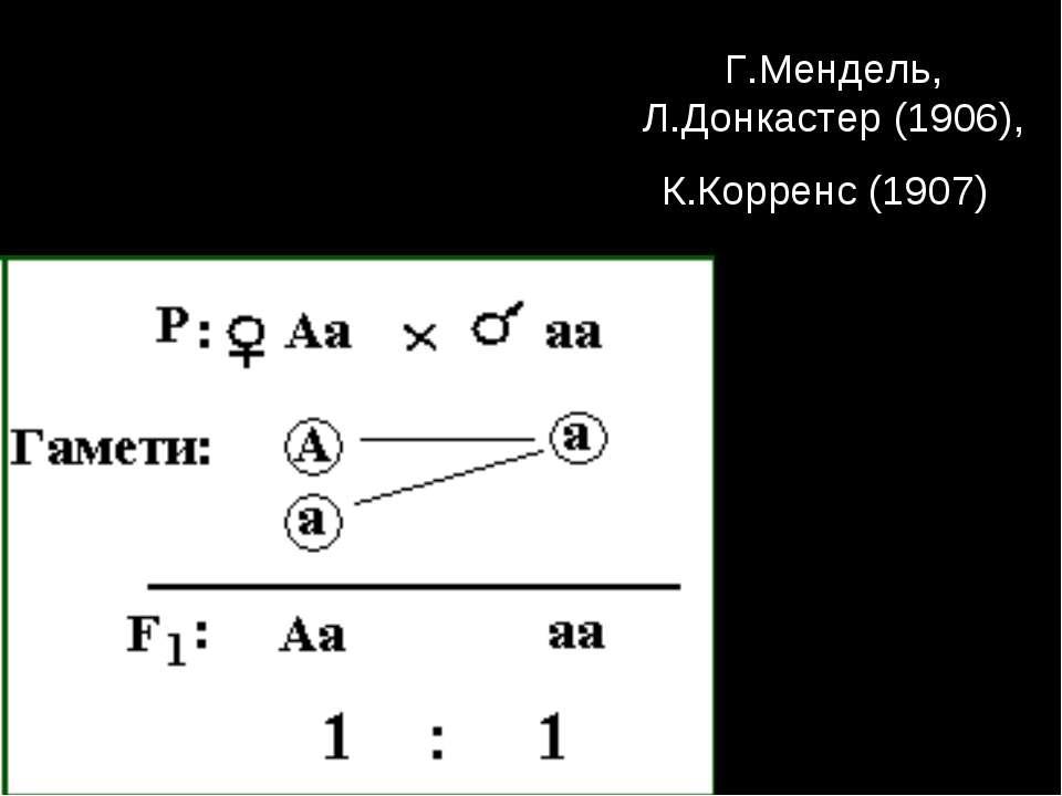 Г.Мендель, Л.Донкастер (1906), К.Корренс (1907)