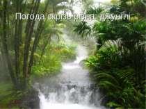 Погода скрізь різна: джунглі