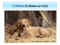 Собака (Собака на сіні)