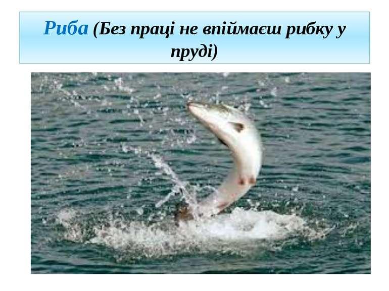 Риба (Без праці не впіймаєш рибку у пруді)