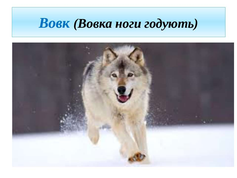 Вовк (Вовка ноги годують)