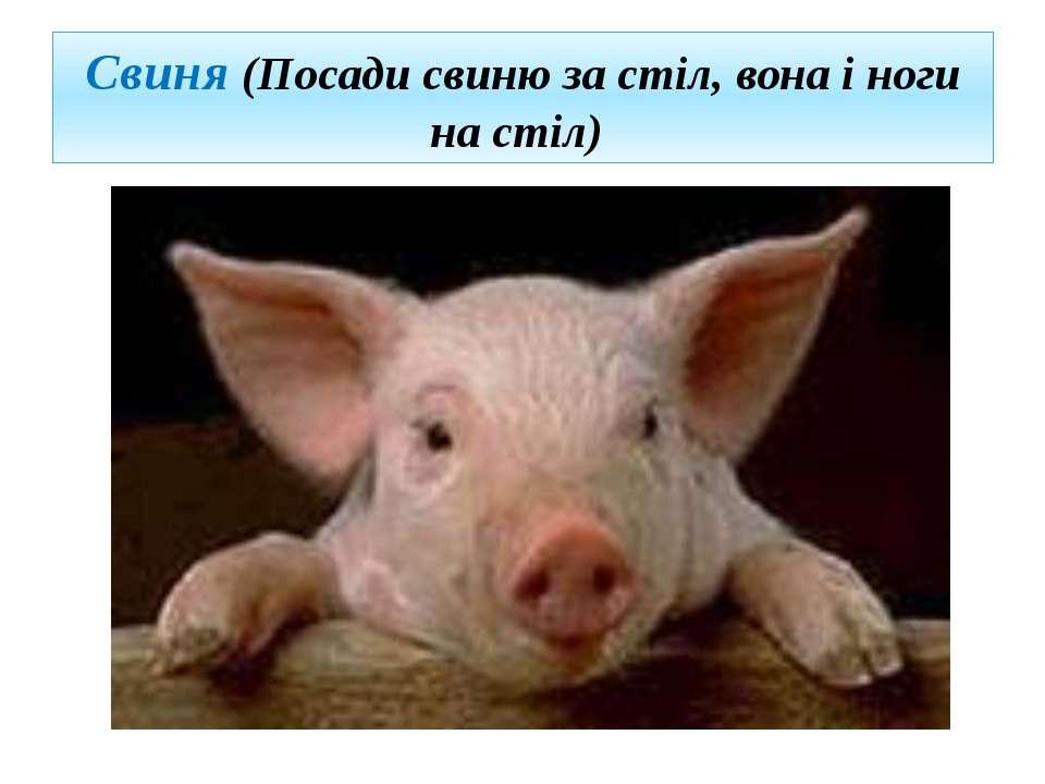 Свиня (Посади свиню за стіл, вона і ноги на стіл)