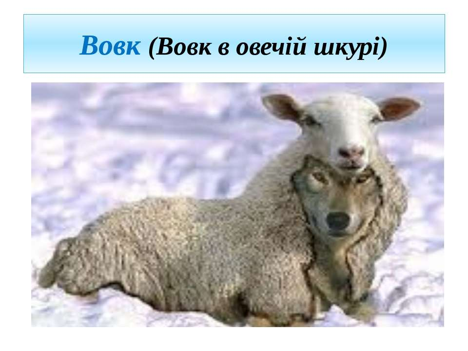 Вовк (Вовк в овечій шкурі)