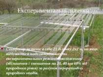 Експериментальні ділянки Стаціонар включає в себе 21 ділянку 2х2 м, на яких в...