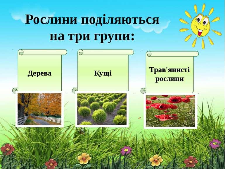 Рослини поділяються на три групи: Дерева Кущі Трав'янисті рослини