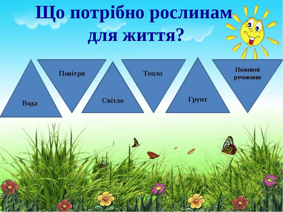 Що потрібно рослинам для життя? Вода Грунт Світло Повітря Тепло Поживні речовини