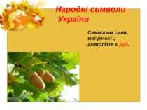 Народні символи України Символом сили, могутності, довголіття є дуб.